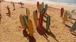 Surf Crazy (342)