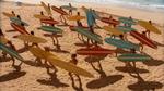Surf Crazy (327)