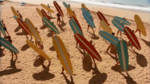Surf Crazy (332)