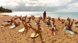Surf Crazy (363)