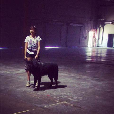 File:Teen Wolf Season 3 Behind the Scenes Real Wolf On Set.png