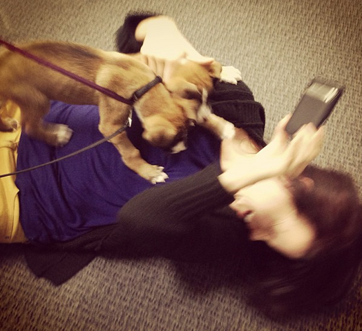 File:Teen Wolf Behind the Scenes puppies 3.png