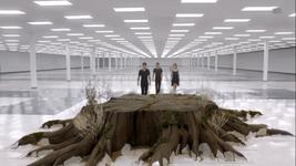 Teen Wolf Season 3 Episode 12 Lunar Ellipse Approaching Nemeton Afterlife