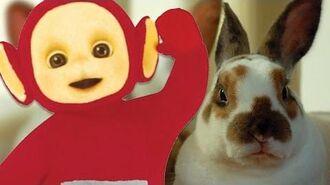 Teletubbies Jigsaw - Rabbits 184 Cartoons for Children