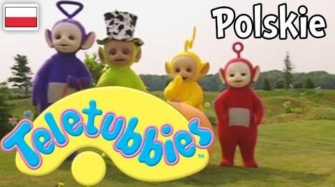 Teletubisie Po Polsku - 57 DOBRA JAKOŚĆ (Pełny odcinek)