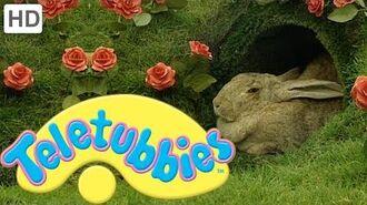 Teletubbies- Rabbits - HD Video