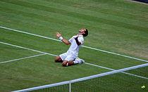 File:Novak Djokovic Wimbledon 2011 semifinal win celebration.jpg