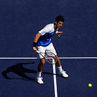 File:Novak Djokovic Volley 01.jpg