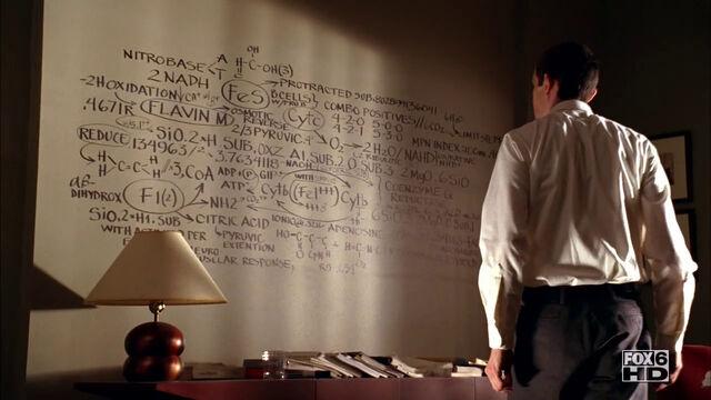 File:SCC 103 formulas on the wall.jpg
