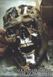 File:Rotten flesh..jpg