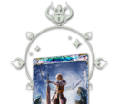Warrior's Card