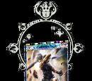 Onion Knight's Card