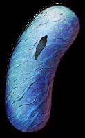 Lazulibean