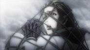 Mirapix in a net