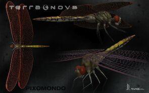 TerraNovaDragonflyJLewers