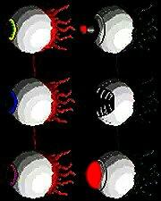 File:180 kindlephoto-23332449.jpg