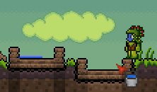 File:Terraria Water Dupe.png