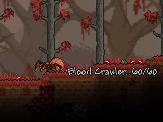 File:Blood Crawler.jpg