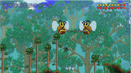 OMG GIANT BEES