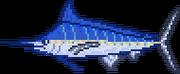 Marlin4
