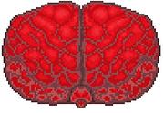 Molten Brain