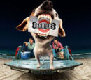 Terriers Television Show Wiki