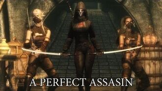 TES V - Skyrim A Perfect Assassin