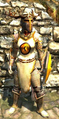 Falkreath Armor - Female