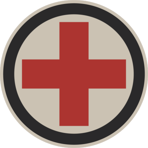 File:HealthIcon.png