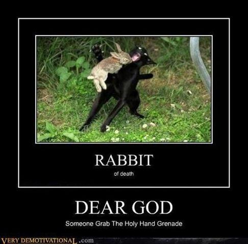 File:Tmp funny-demotivational-posters-rabbit-of-death-467834767.jpg