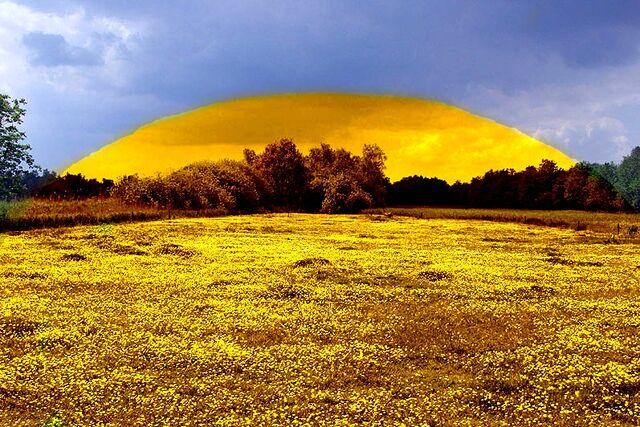 File:Bonum Meadow Shield2.jpg