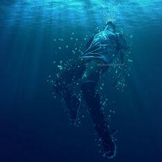 Drowning Phoenix
