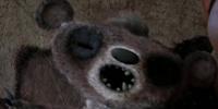 Krispy Bear