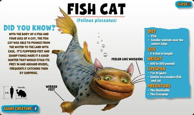File:Fish Cat.jpg
