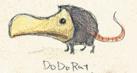 Dodo Rat