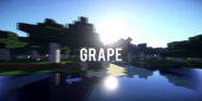 S9 - Grape