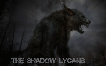 Shadow Lycans 3