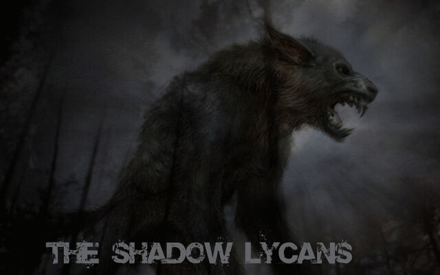 File:Shadow Lycans 3.jpg
