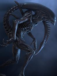 File:Warrior Alien.jpg