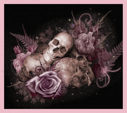 File:Skulls and Roses by SerenityNme.jpg