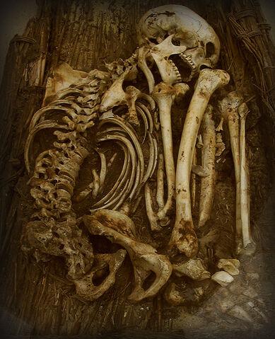 File:Pre-dynastic burial 2.jpg