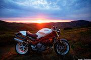 Ducati Monster (-46416)