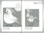 Fitoria Bird