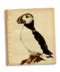 C139 Beautiful birds i04 Atlantic Puffin