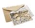 C481 Strange letters i01 Clockmaker's letter