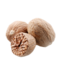 C144 Spice rack i05 Nutmeg