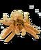C260 Halloween toys i01 Spider