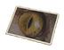 C509 Pictures of eyes i02 Feline eyes