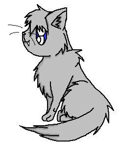 File:Graycat.jpg