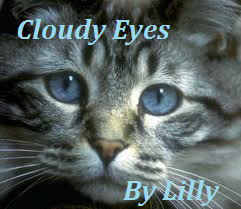 File:Cloudy Eyes.png